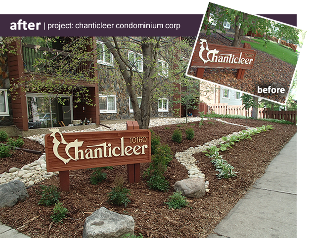 before_after_chanticleer2