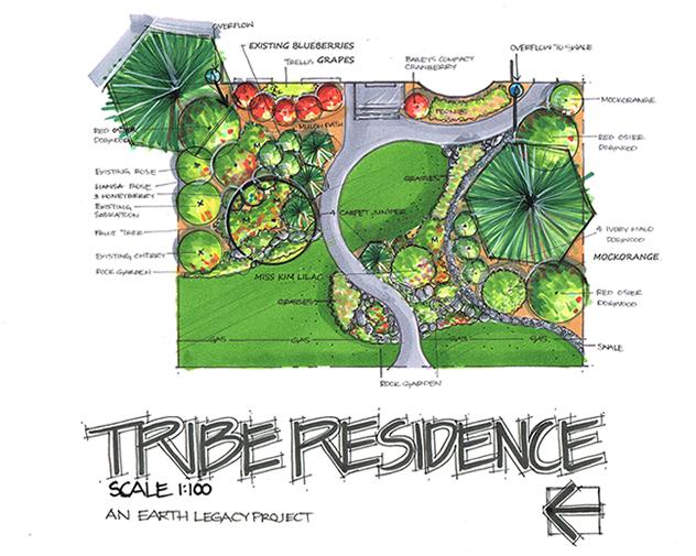tribe_design.fw